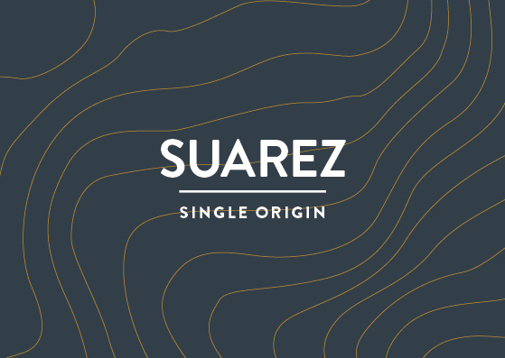 Voyager Suarez Single Origin Syrupy